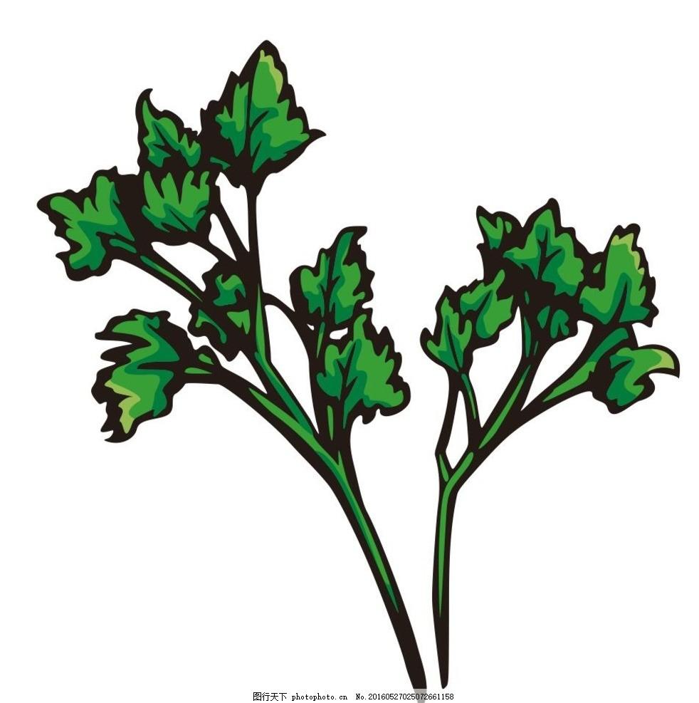 菜叶子 叶子 枝杈 蔬菜 水果 简笔画 线条 线描 简画 黑白画 卡通
