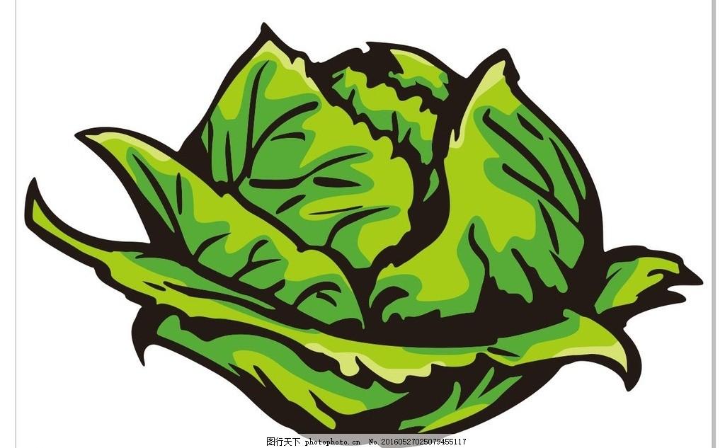 包菜 水果 简笔画 线条 线描 简画 黑白画 卡通 手绘 标志图标