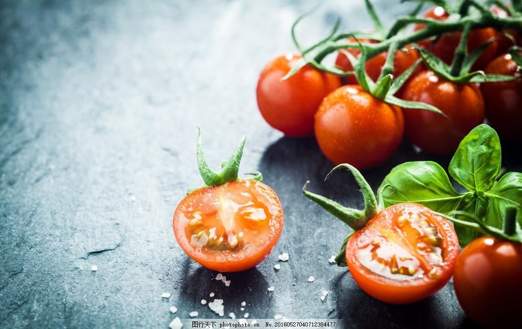 西红柿 水果 食物 小可爱 叶子 番茄 图片素材 摄影 餐饮美食 其他