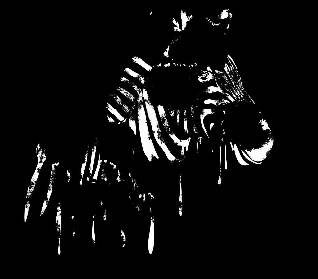 斑马 线条 黑白 动物 图案设计