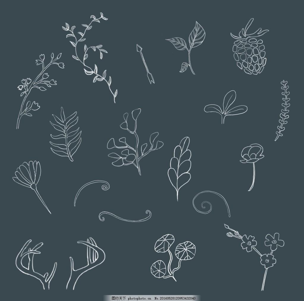 植物树叶手绘风 线描