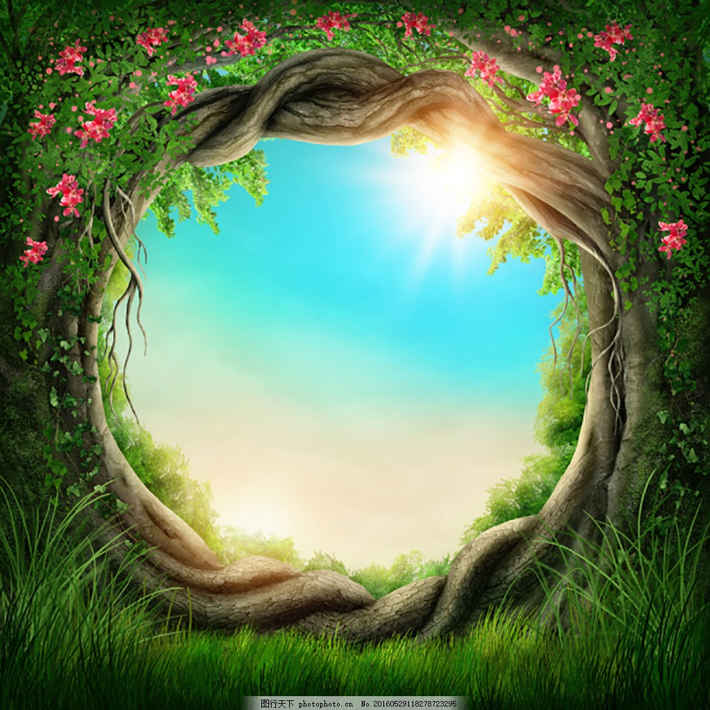 绿色大气背景 绿色植物 鲜花 化妆品背景 森林背景