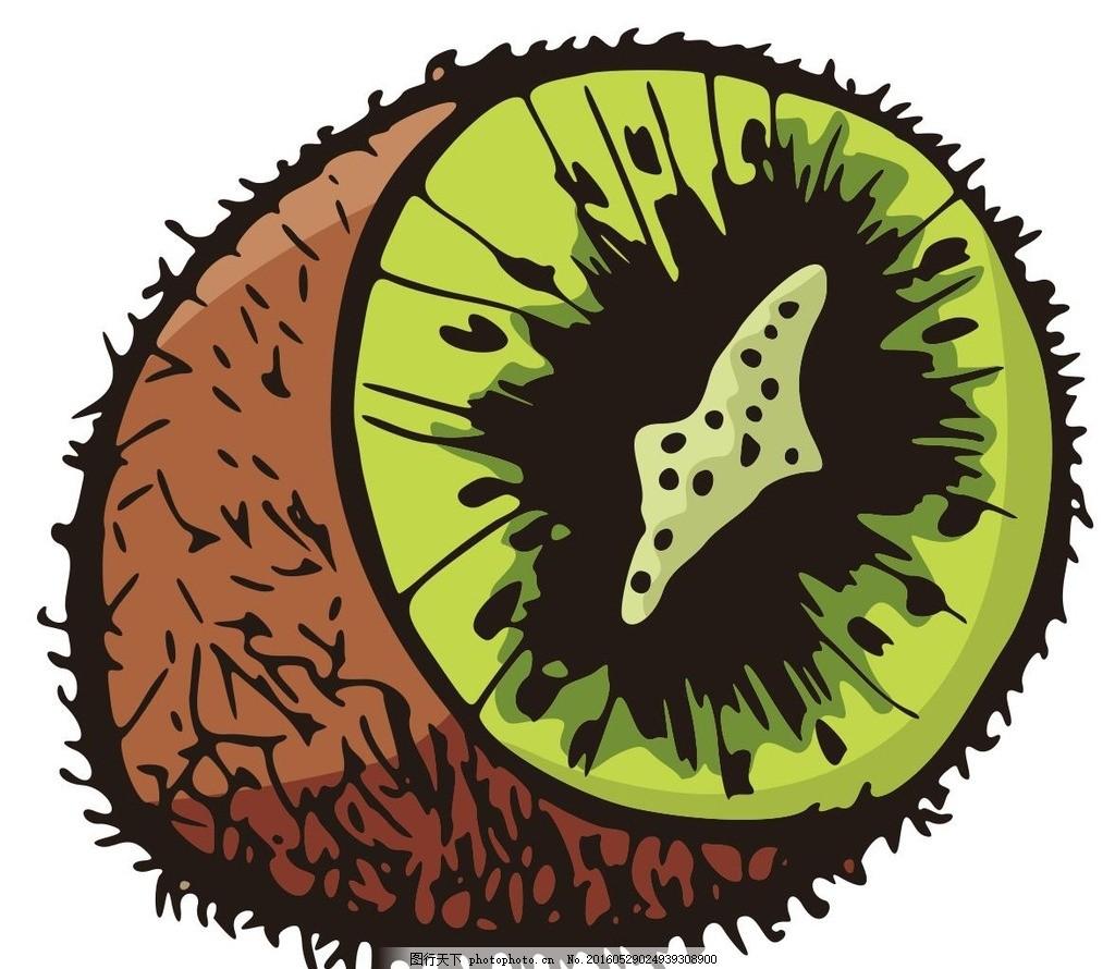 猕猴桃 猕猴桃剖析图 水果 fruit 彩绘水果 简笔画 线条 线描 简画