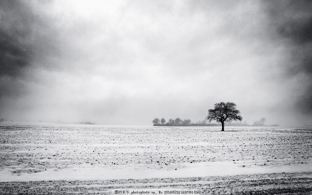 冬季风景 唯美伤感 白雪 灰色 孤单 茫茫大雪