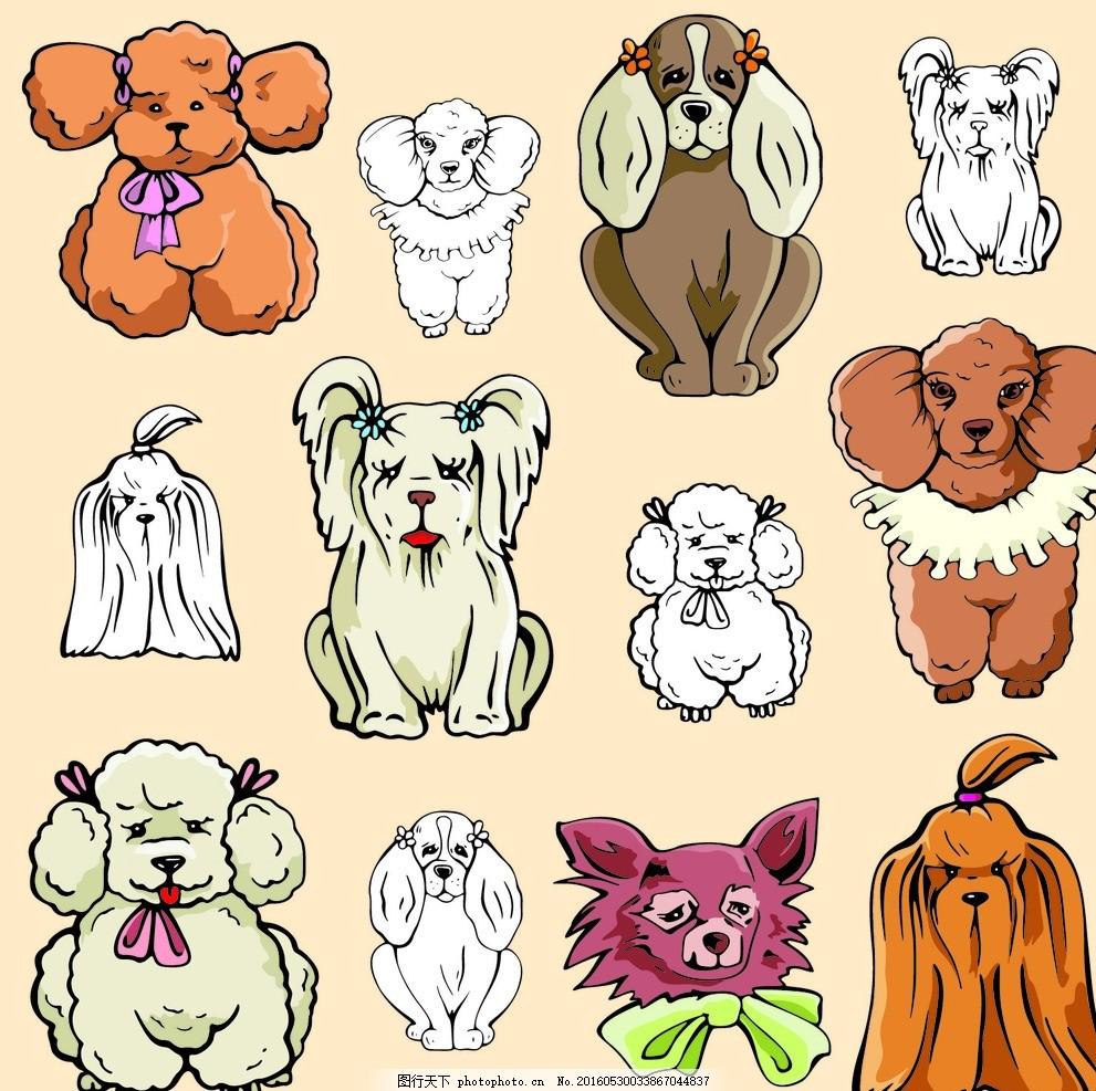 插画卡通宠物狗头像 泰迪 京巴 哈巴狗 手绘 图片素材