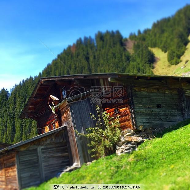 阳光下的房子 高山小屋 阿尔姆 山上的小屋 棚屋 小木屋阳光 房子