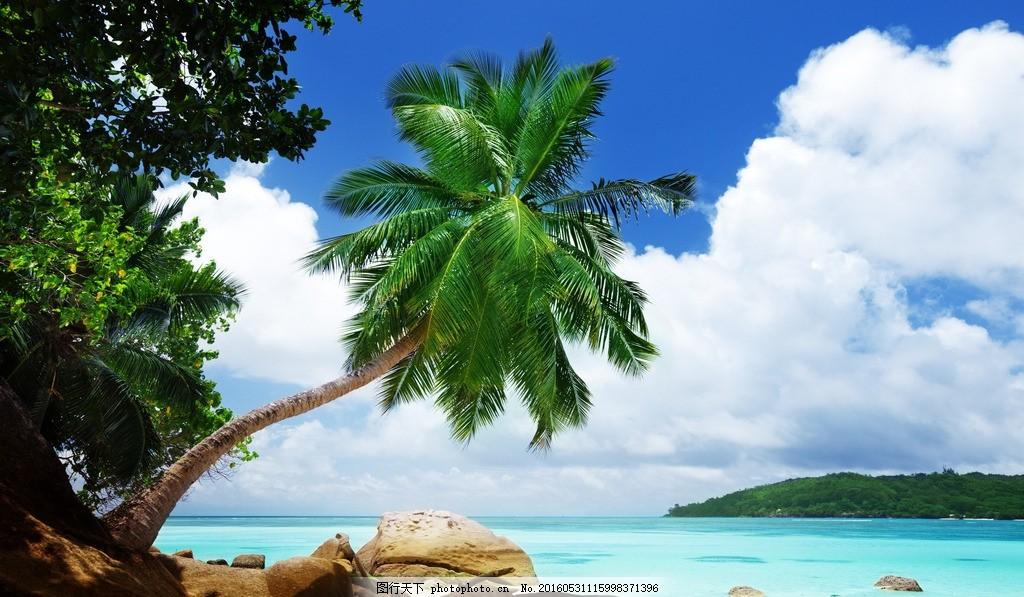 海滩 沙滩 海洋 大海 海边 热带 海岛 椰子树 蓝天 白云 马尔代夫
