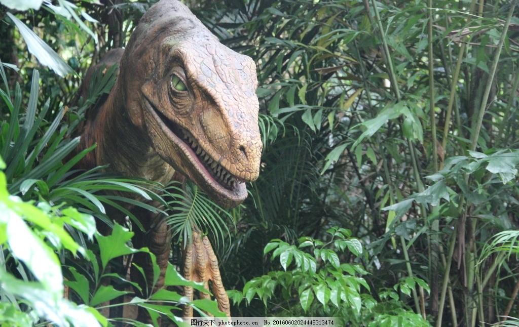 恐龙 野生动物园 长隆 广州 树木 草丛 侏罗纪 广州长隆 摄影