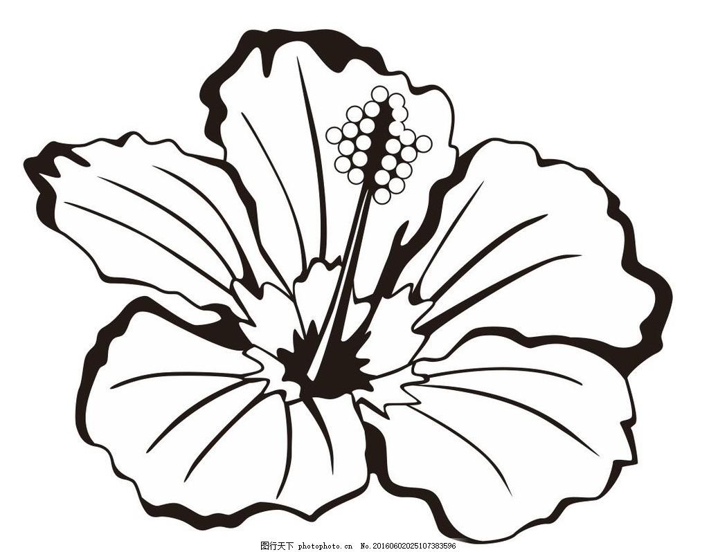 花 植物 插画 简笔画 线条 线描 简画 黑白画 卡通 手绘 简单手绘画