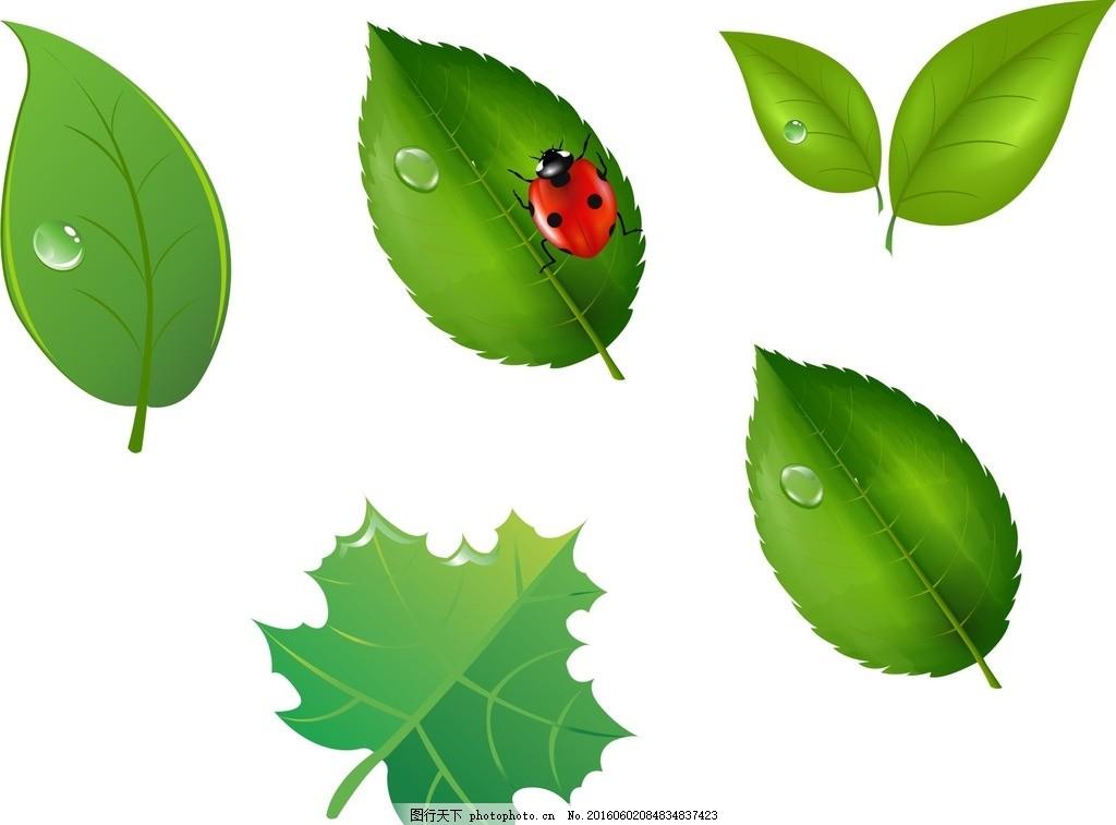 绿色树叶矢量 植物 矢量树叶 树叶素材 矢量树叶素材 绿色树叶素材 矢