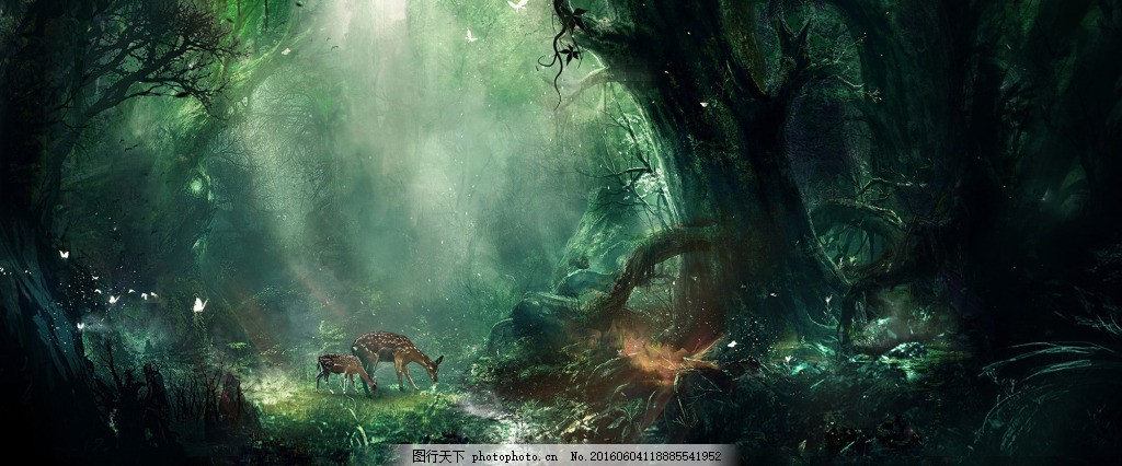 梦幻森林淘宝背景 大树 海报