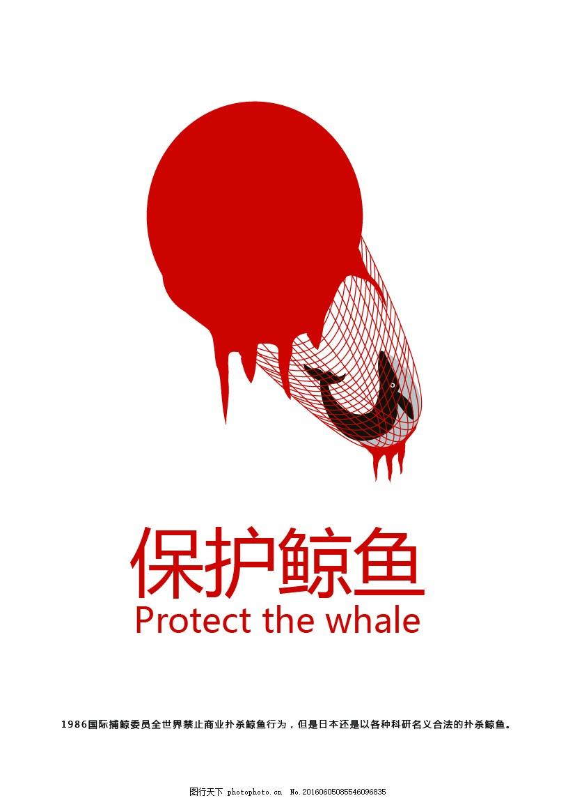 保护鲸鱼图片
