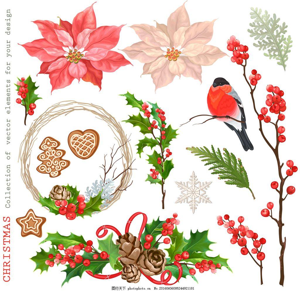 圣诞节素材 松果 松叶 花朵