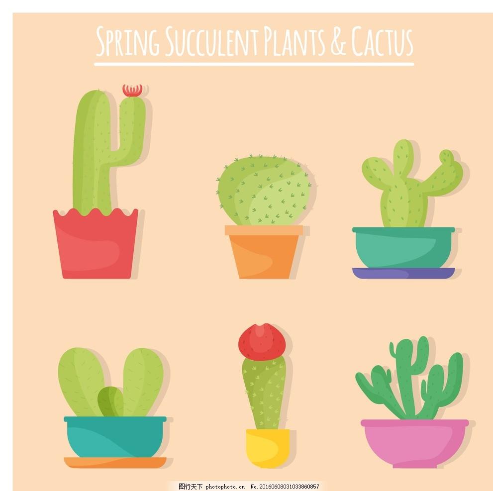 手绘仙人掌 花卉 设计 自然 平 可爱 植物 性平 仙人掌 集合 花盆
