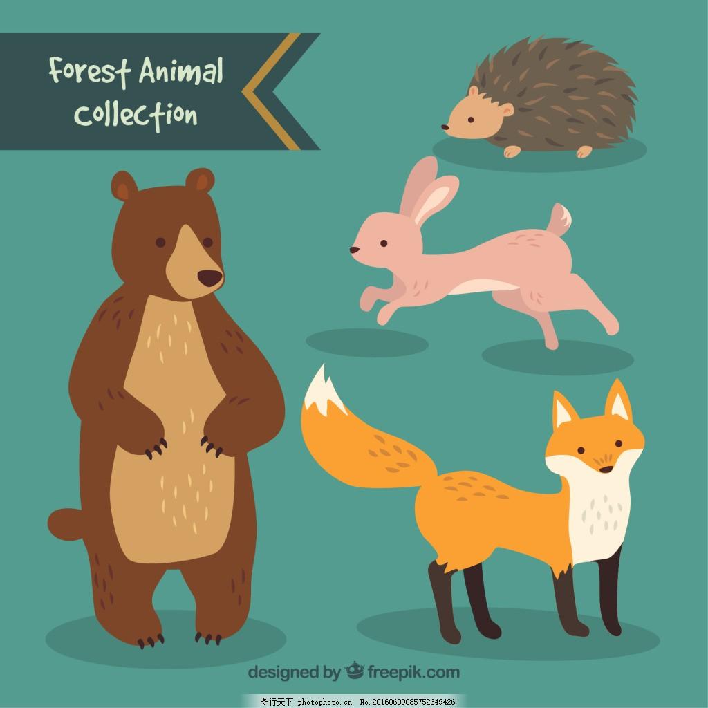 手绘可爱的森林动物收藏图片下载
