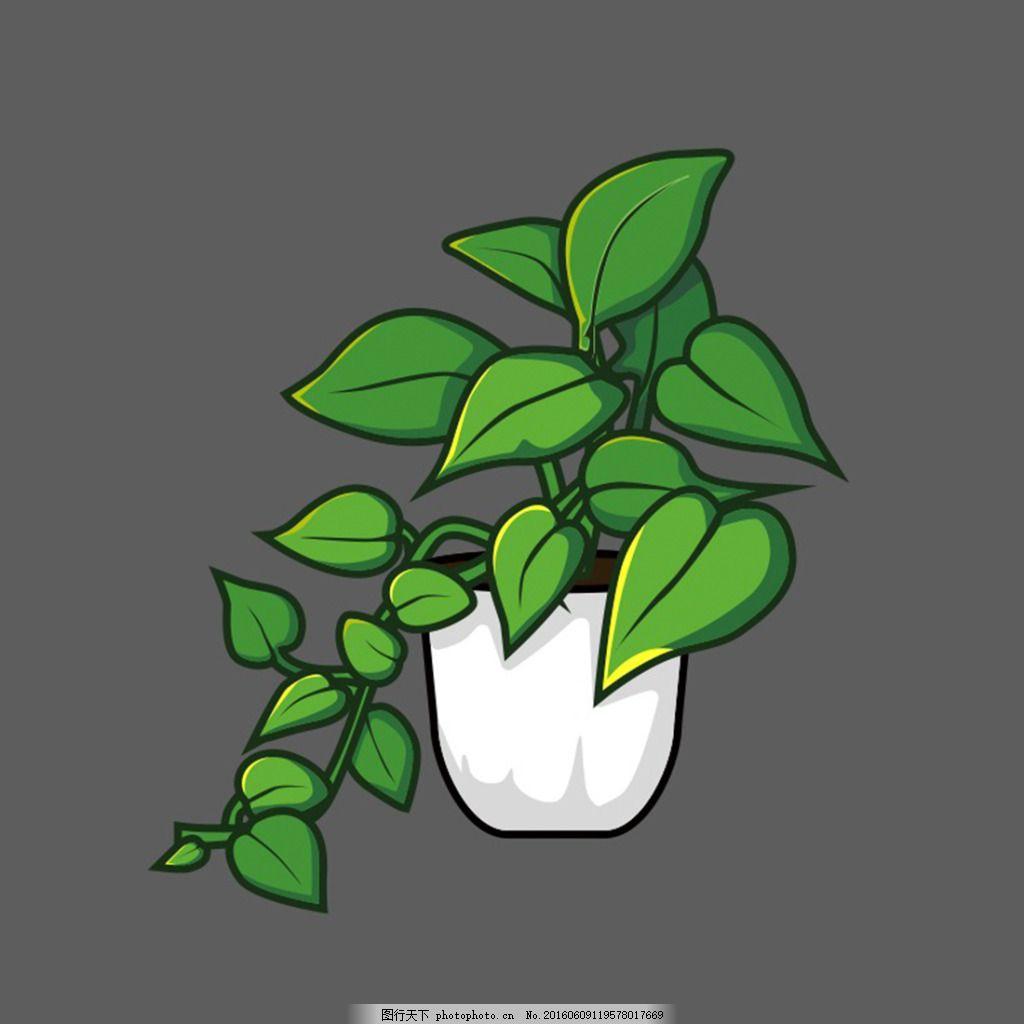 绿萝变成图画的步骤