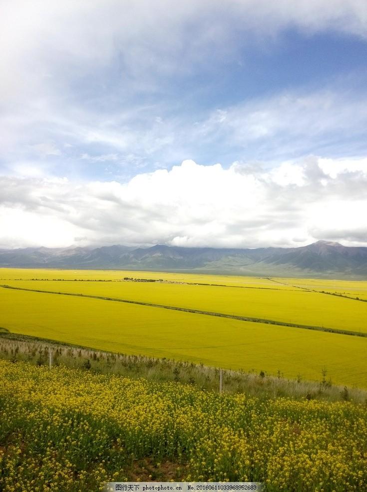 西藏农田 藏区 藏族地区风光 风景 旅行 自然 西藏自治区 藏族自治区