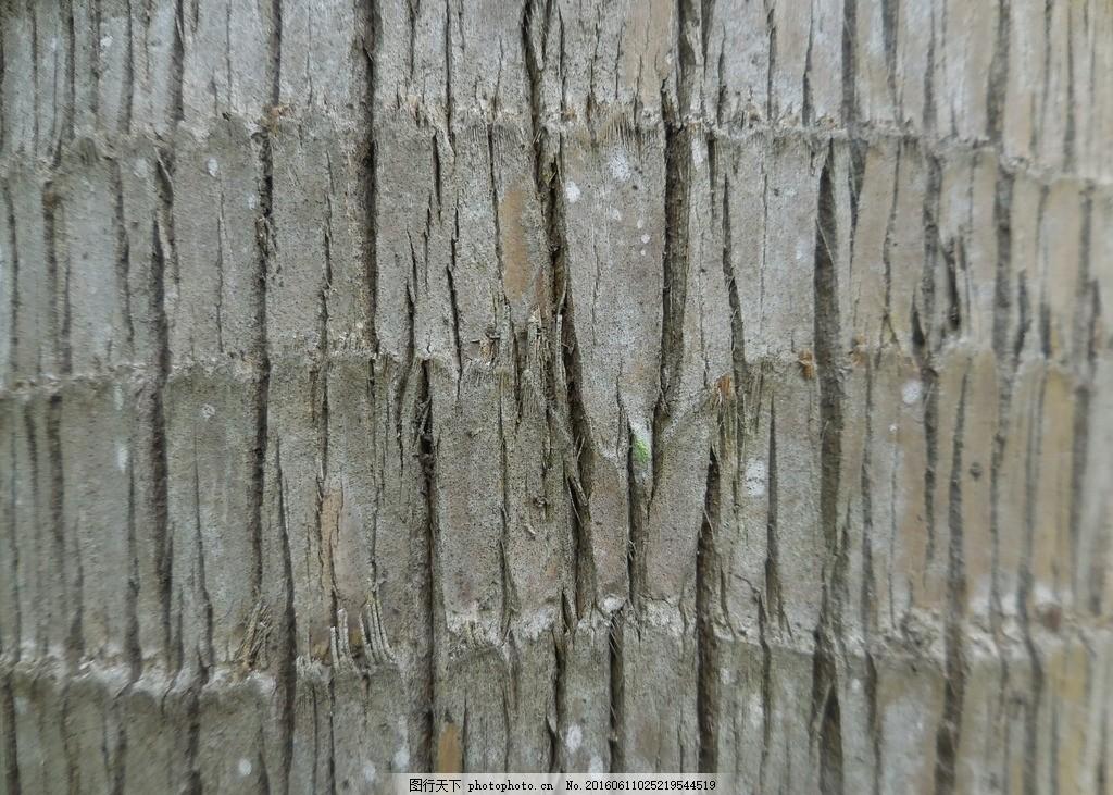 树皮材质 植物树皮 树木表皮 树木皮肤 树皮花纹 沧桑 斑驳 树皮纹理
