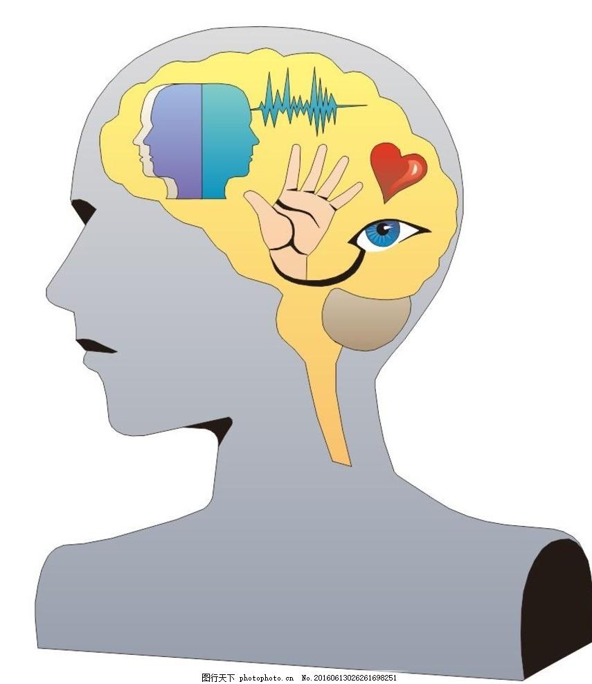 大脑 剖析图 大脑解释图 医疗 插画 简笔画 线条 线描 简画 黑白画 卡