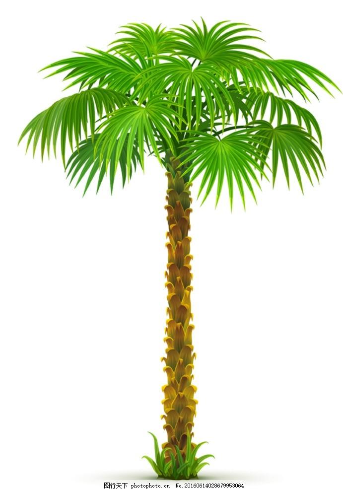 夏日椰树 漂浪 海南风光 椰子林 海边树 椰子树 椰子 椰树 海边 沙滩