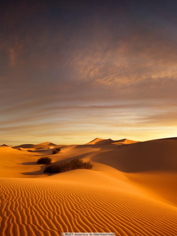 黄昏沙漠风景图片,黄昏沙漠风景高清图片下载 自然