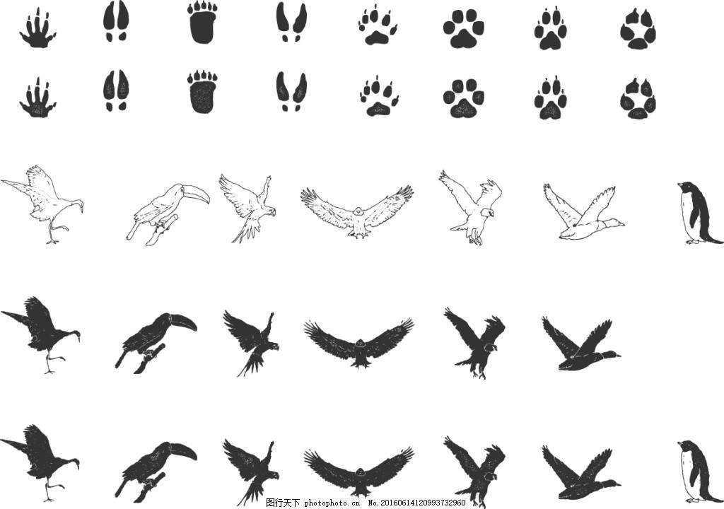 脚印剪影飞行动物