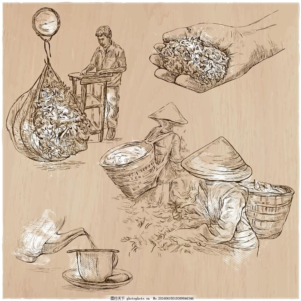 辛勤采茶的人手绘画 辛勤 采茶女 手绘画 泡茶 茶叶 手绘图 勤快 采茶