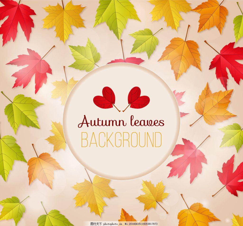 秋天树叶背景素材 矢量背景 白色