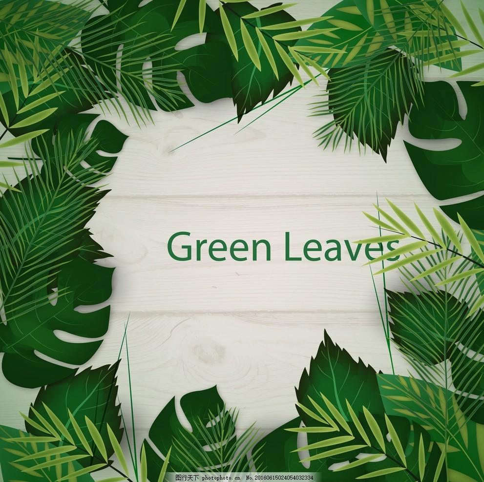 小清新植物 小清新叶子 叶子 植物 矢量素材 ai叶子 树叶 芭蕉叶 铁树