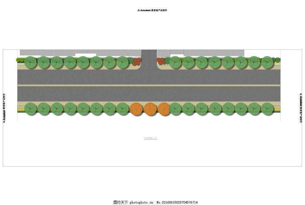 道路 绿化 标段 手绘标段 道路施工 平面图 马路绿化 绿化施工图 市政