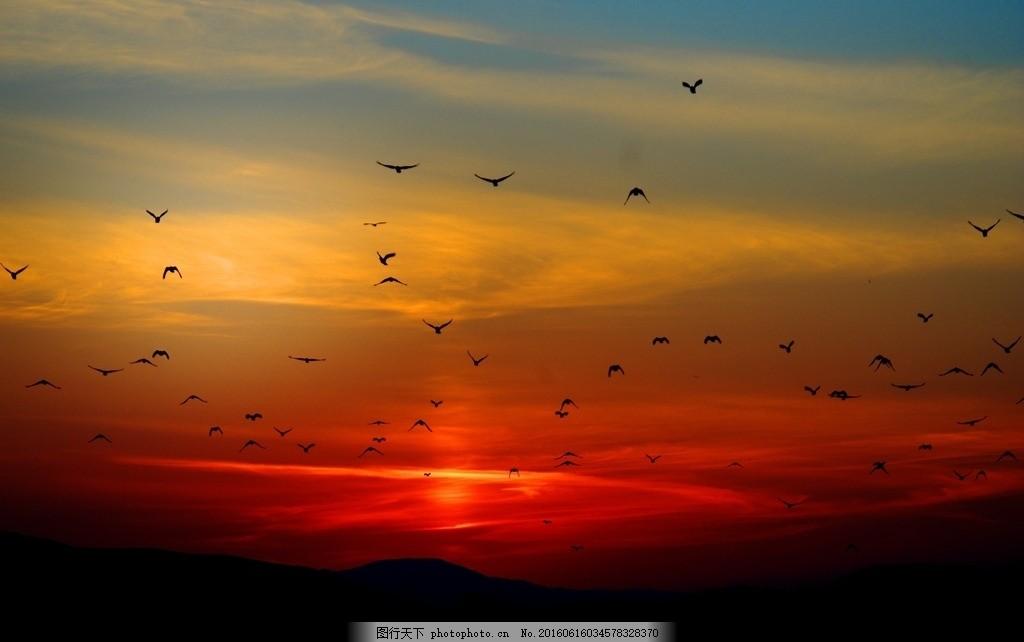 绚丽夕阳下的飞鸟 帆船 贝壳 海螺 石子 海边 城市 岩石 蓝天 白云