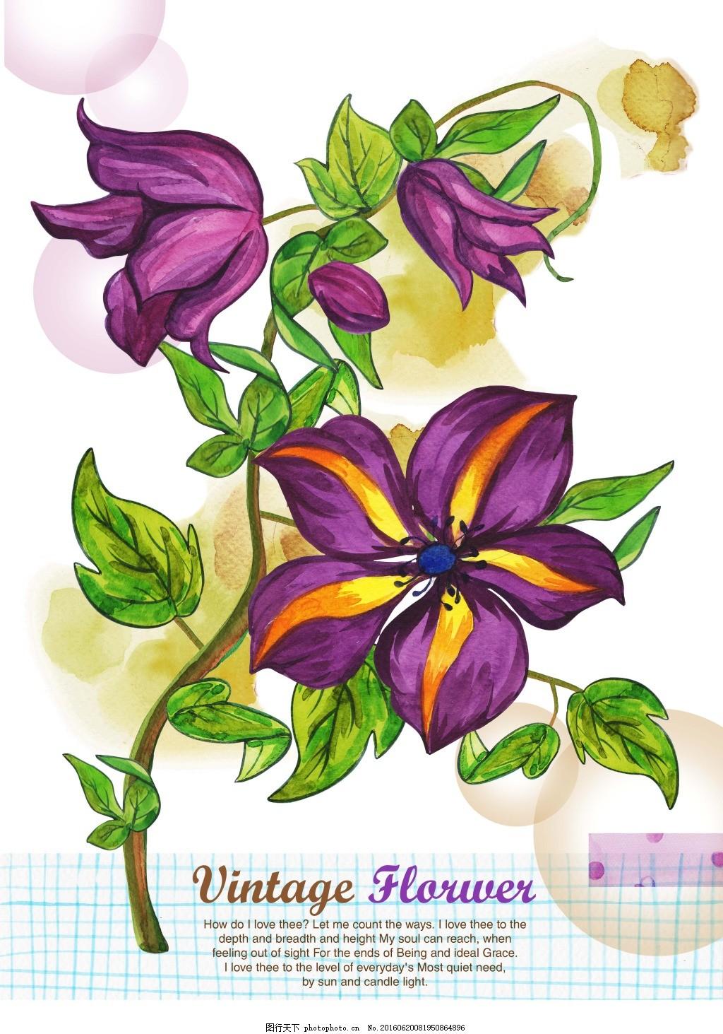 韩式小清新手绘紫色花朵 手绘 花 水彩 韩版