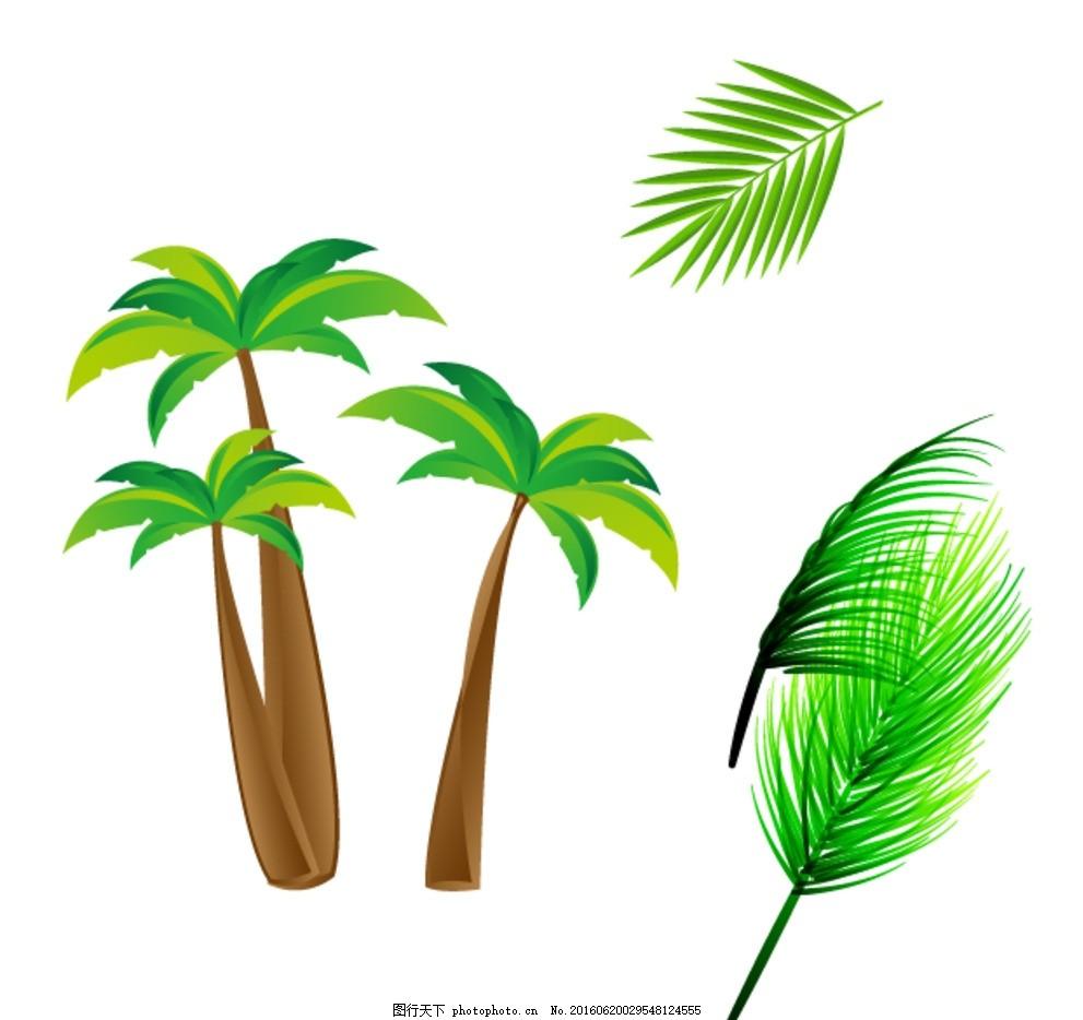 椰子树 树叶