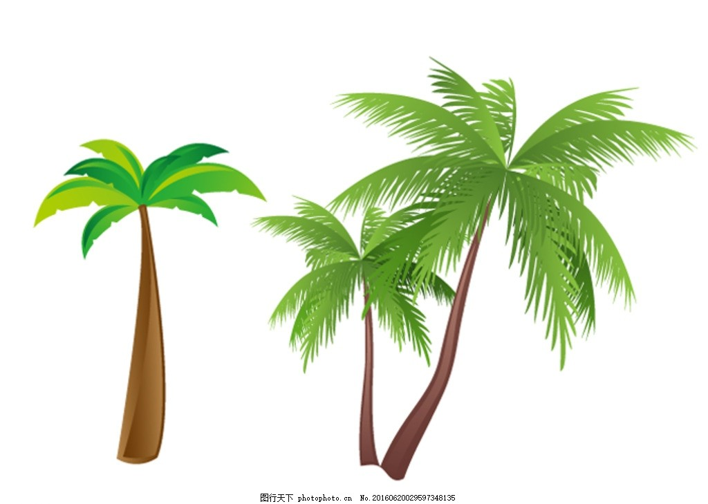 椰树 椰树图片 卡通椰树 手绘椰树 卡通素材 夏天 夏季 可爱 素材