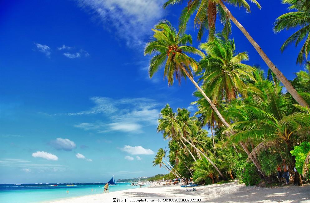 海边 椰子树 大海 沙滩 海边假日 海边度假 摄影 旅游摄影 自然风景 3