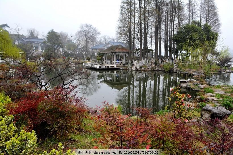 南京玄武湖公园风景