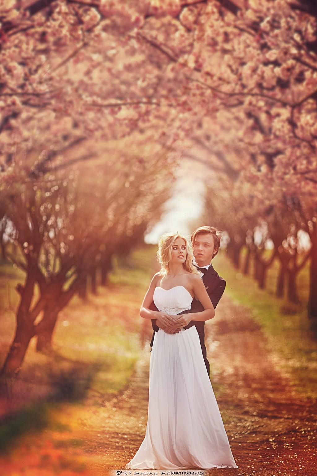户外浪漫婚纱照图片素材下载 森系 婚纱照 树林 樱花林 粉色花朵
