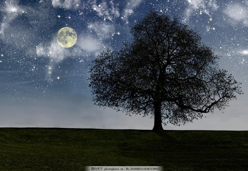 夜晚月亮星空大树草地高清壁纸图片