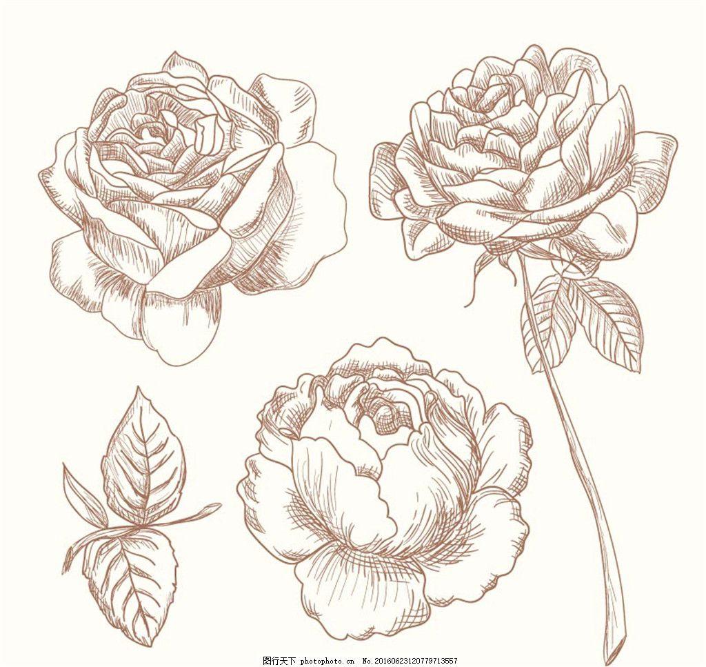 3款手绘玫瑰花矢量素材 手绘 玫瑰花 矢量素材 矢量 创意手绘图 花纹