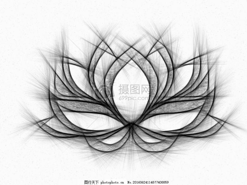 含苞待放的睡莲 睡莲 绘图 铅笔 花莲花 线条 铅笔画 白色 纸张