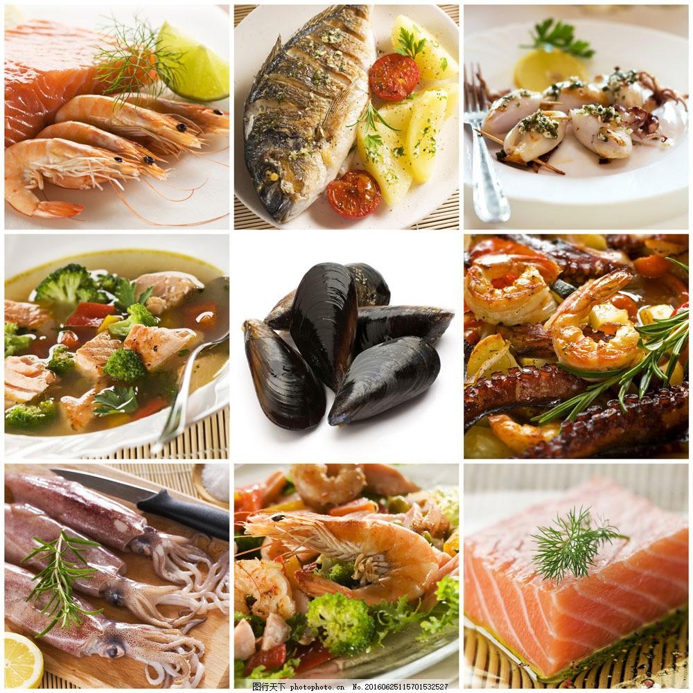 海鲜食材与美食图片素材 三文鱼 虾 鱿鱼 贝壳 海鲜美食 食材 食物