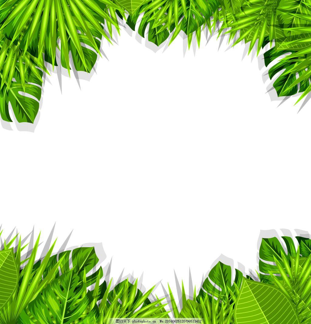 绿色的植物 叶子 绿色 植物 花边