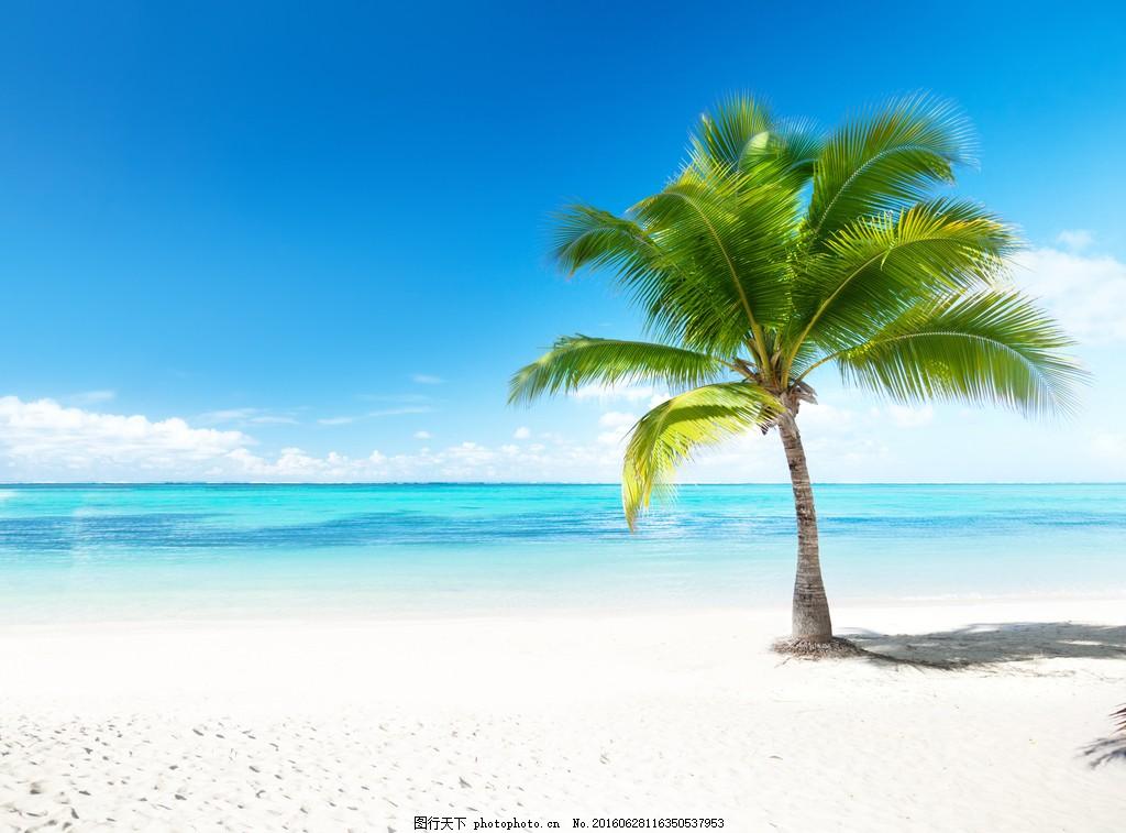 美丽的热带风景图片
