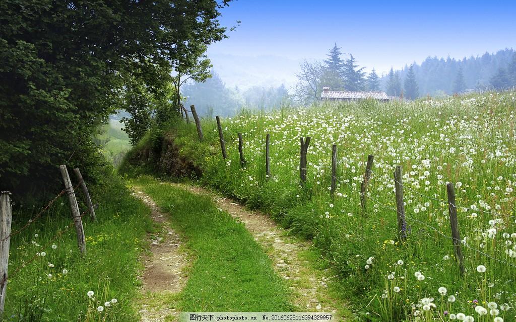美丽的乡间小路风景图片