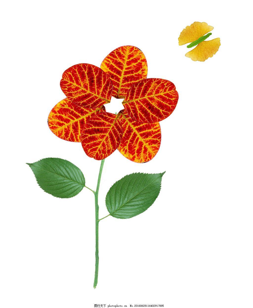 枫叶粘贴画高清图片下载,树叶 花朵 叶子 红叶 落叶