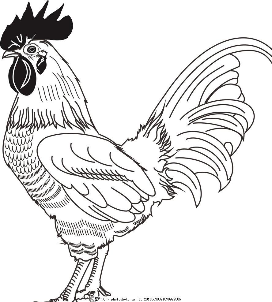 线条鸡 彩绘公鸡 手绘公鸡 撑腰鸡 可爱公鸡 彩色公鸡 功夫鸡 鸡鸣 插