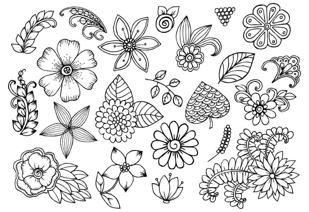 手绘黑白花朵 花纹 手绘 花朵 叶子 黑白